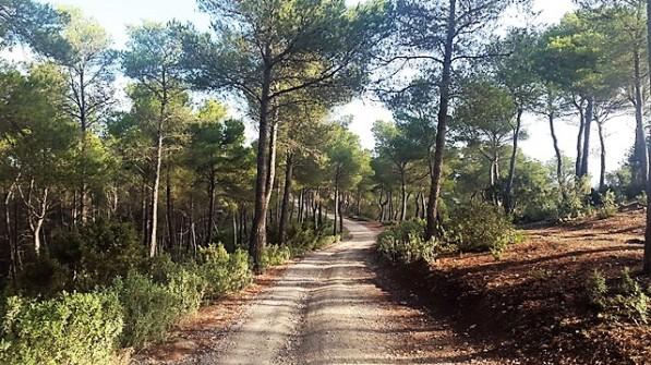 Sa Talaia Ibiza