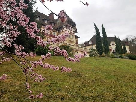 Les voyages de Valentine-Château de la Tour
