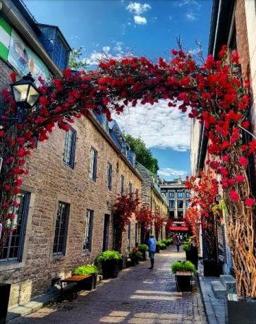 Vielle ville Montréal-Road Trip Québec