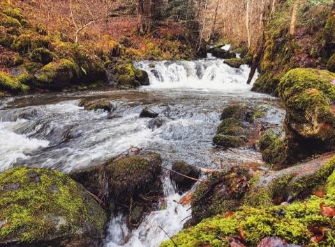 Parcours le long des cascades de Chiloza
